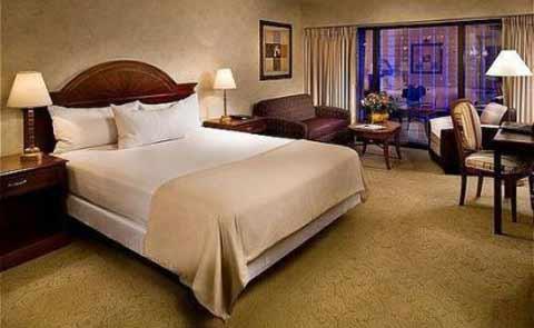 Flamingo Hotel Las Vegas Nevada