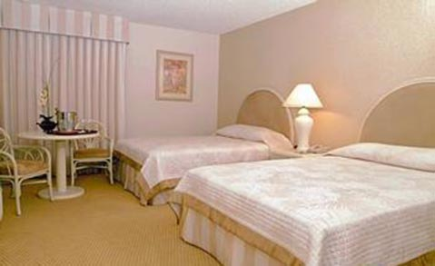 The Quad Hotel and Casino Las Vegas Guest Room