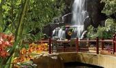 Encore at Wynn Las Vegas Hotel Waterfall