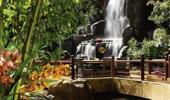 Wynn Las Vegas Hotel Waterfall